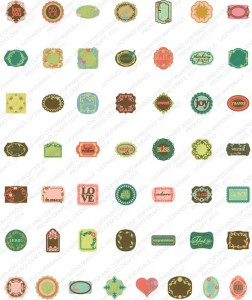 lacy labels sample images
